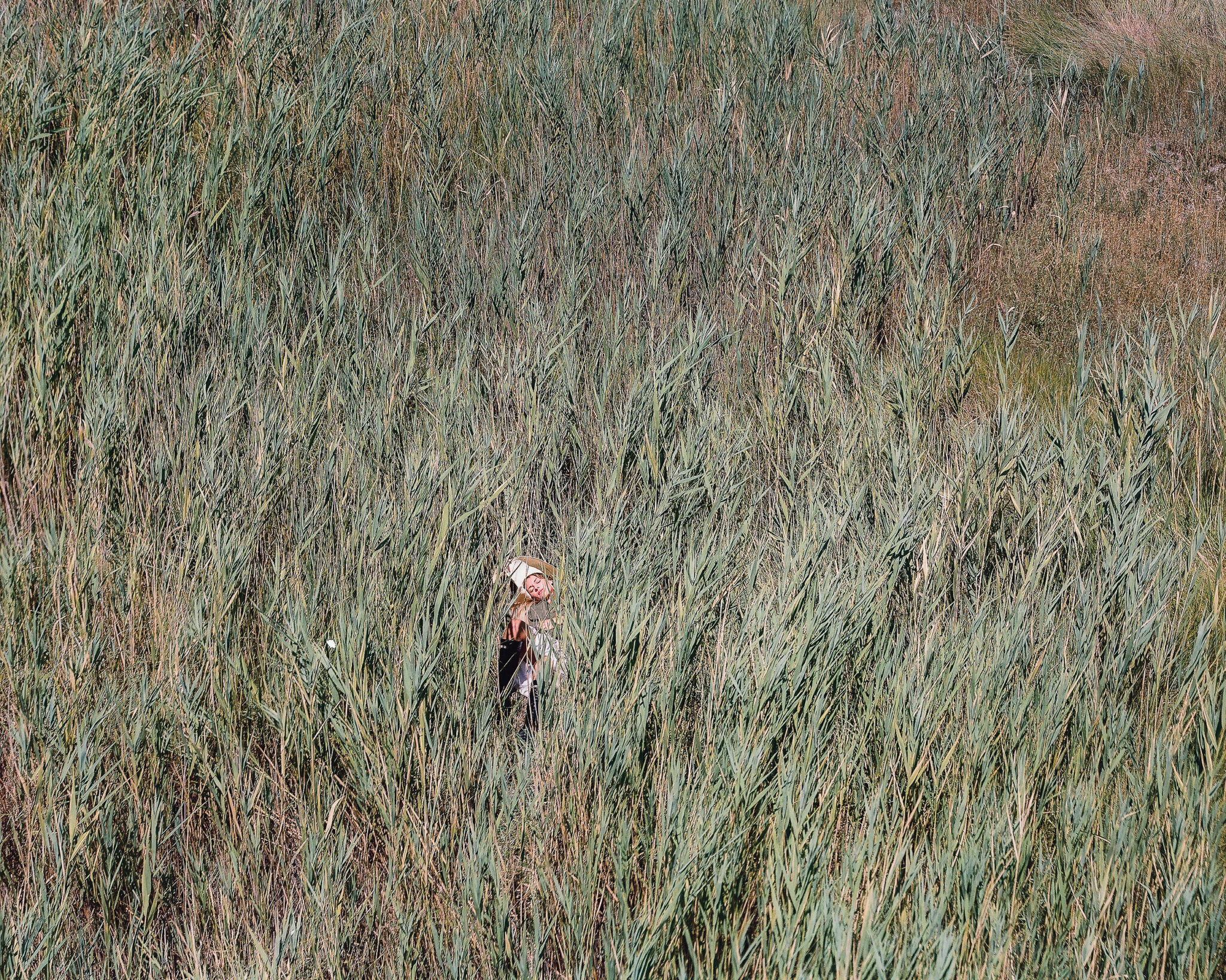 Fotografia aerea di modella che si perde in mezzo a un campo di grano verde, con Mamiya RZ67 medio formato